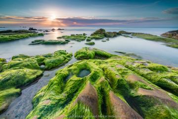 RAY HỒNG TRÊN THẢM XANH (SUN RAYS AND MOSSY ROCKS) 30 s F/8 ISO 400 WB 5200K. Gnd Rev0.9 ND 3.0. Cổ Thạch, Bình Thuận.