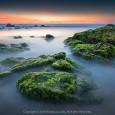 Chân Trời Rêu Xanh (Sea Moss in Dream) 61s ISO f/6.3 ISO 100 WB 6500K. Sony a7r3 + Sony 16-35 f2.8 GM @ 16mm. Cổ Thạch Bình Thuận 2/2/2018 5:43 am.