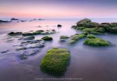 HỪNG SÁNG RÊU SƯƠNG (Rock Moss at Dawn) 61s f/5.6 ISO 200 WB 5800K. Sony A7r3 + Lens 16-35 f/2.8 GM @ 16mm.  Cổ Thạch, Bình Thuận  lúc 2/2/18 5:56am.