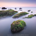 RÊU PHỦ BỜ XA (Distant Sea Moss) 61s f/11 ISO 50 WB 6200K. Sony a7r3 + Lens Sony 16-35 f2.8 GM @ 16mm. Cổ Thạch Bình Thuận.